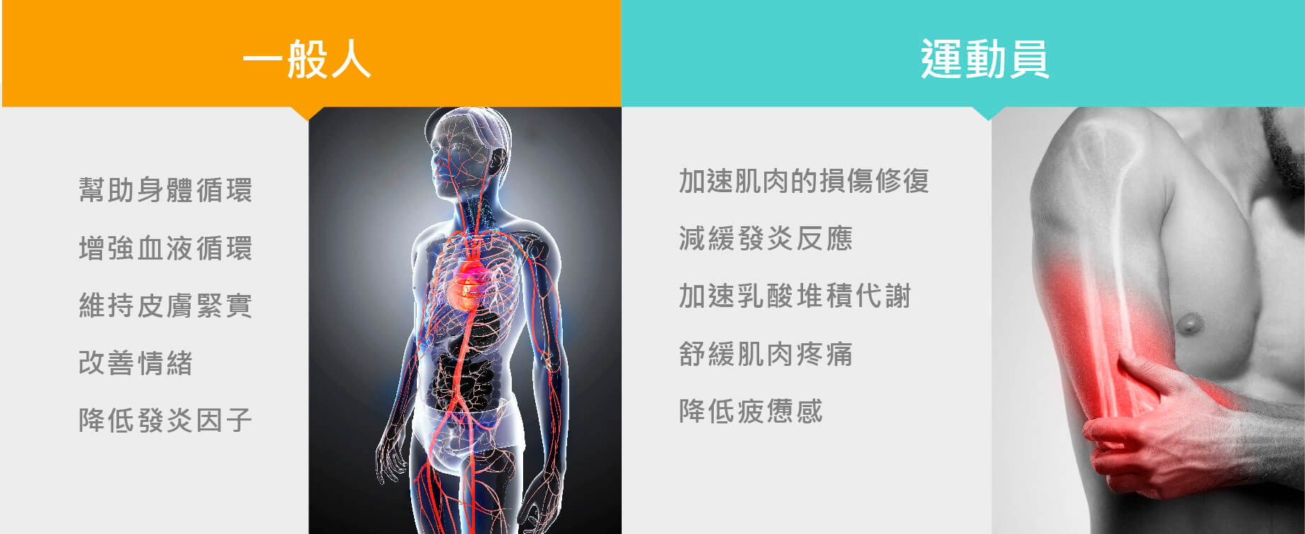 •幫助身體循環 •增強血液循環 •維持皮膚緊實 •改善情緒 •降低發炎因子•可加速運動後肌肉的損傷修復 •減緩發炎反應 •加速乳酸堆積代謝 •舒緩肌肉疼痛與疲憊感等