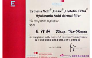 尼斯診所-王祚軒執行長-美體雕塑-全臉微整型-男性生殖器整型-瑞士安緹斯玻尿酸原廠認證